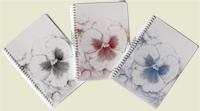 cuadernos A6