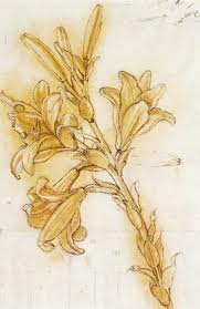 Azucena de Leonardo Da Vinci