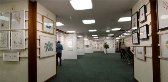 sba-exhibition-2011