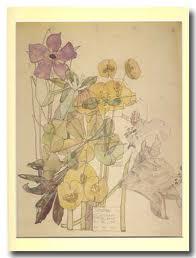 Flores de Mackintosh