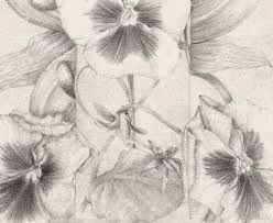 Homenaje a Mucha, dibujo de Marta Chirino