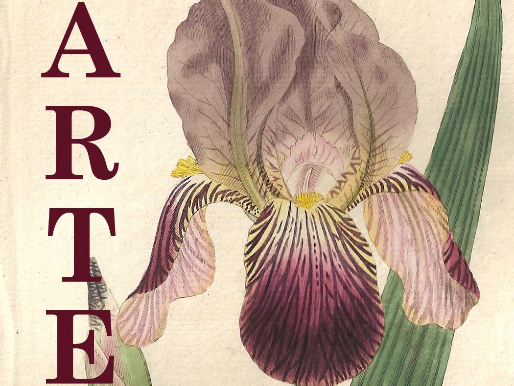 pagina web de by botany