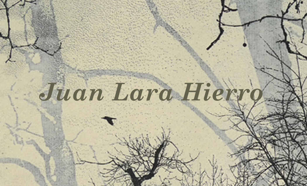 """Juan Lara Hierro"""