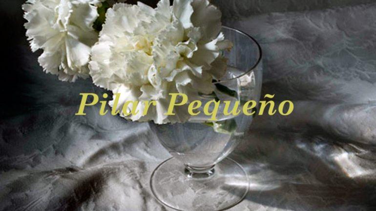 Pilar Pequeño