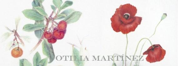 Obra de Otilia Martínez