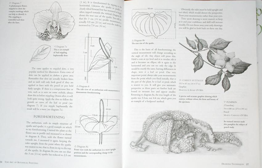 estudios botánicos
