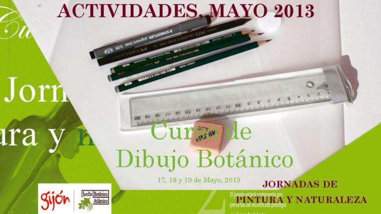 Fin del curso de dibujo botánico en Gijón