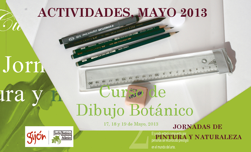 Curso de dibujo botánico en Gijón,