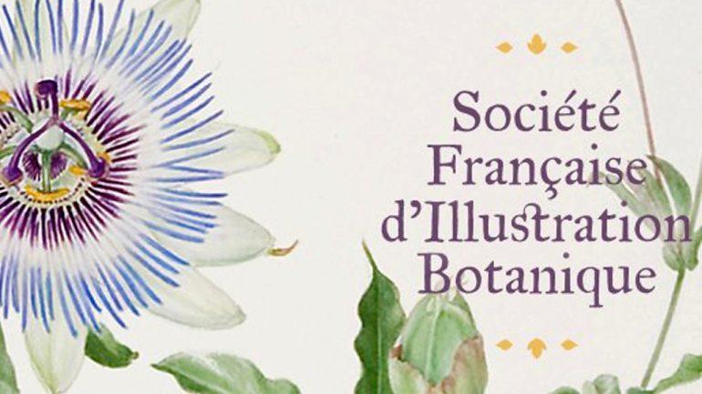 Société FranÇaise d´Illustration Botanique