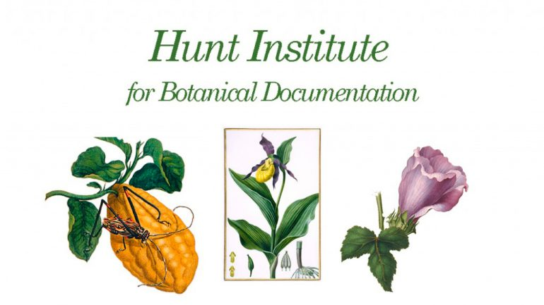 The Hunt Institute for Botanical Documentation