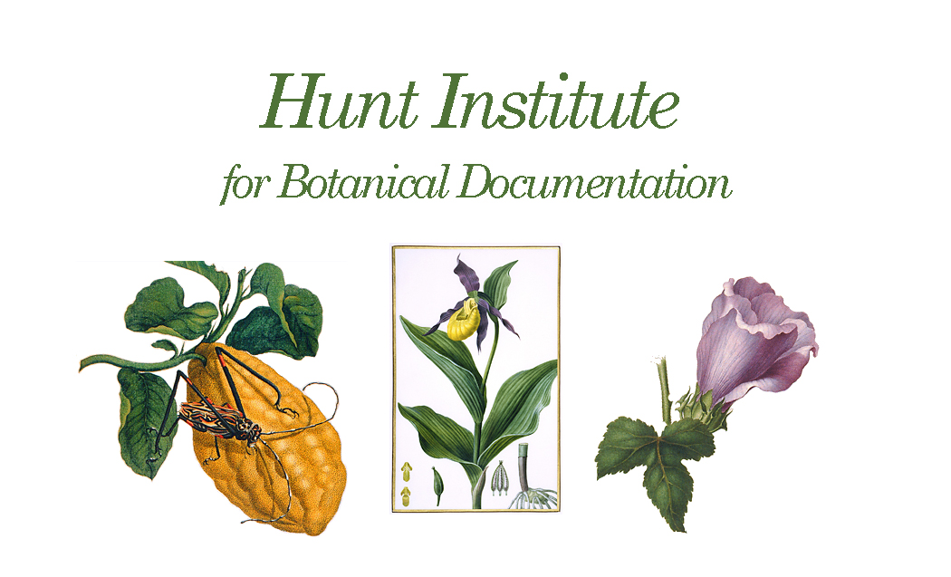 Hunt Institue for botanical documentation