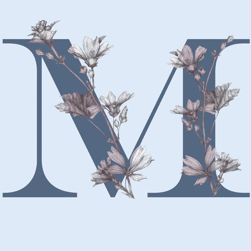 LETRA-M-AZUL-ALBUM