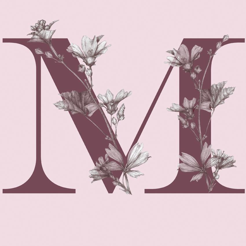 LETRA-M-fondo-rosa-album