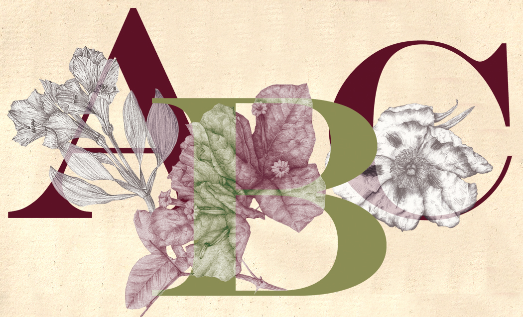 The floral alphabet original by Marta Chirino