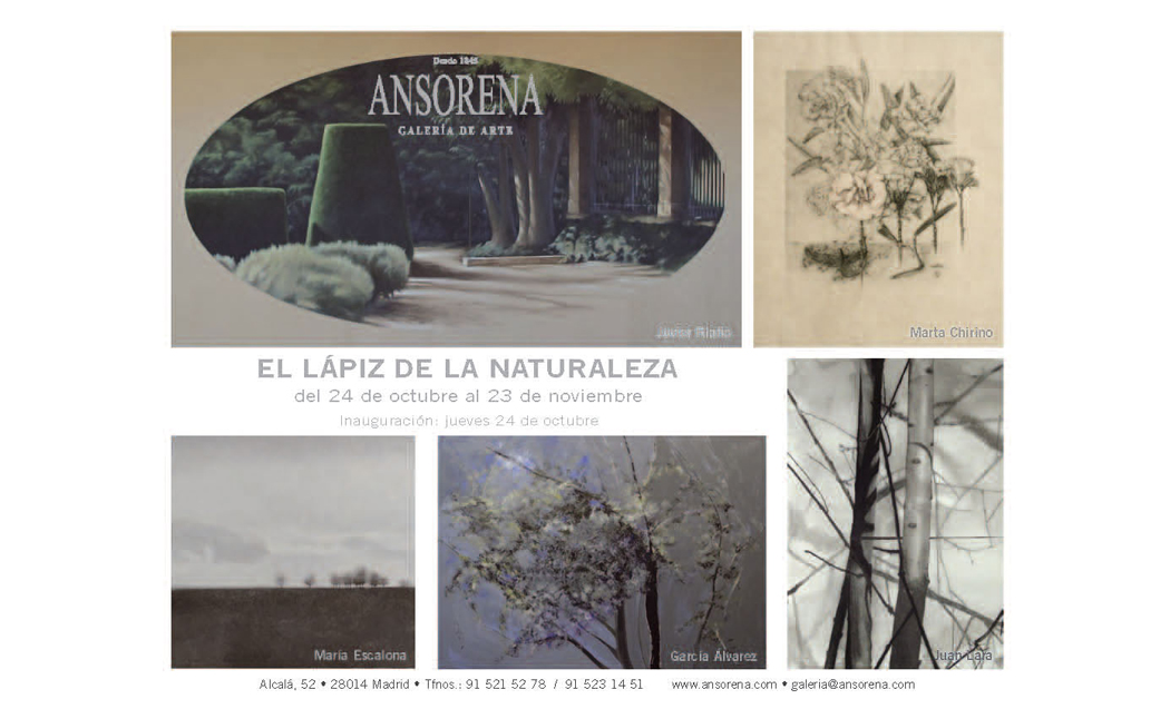 El Lápiz de la Naturaleza, Exposición en Ansorena