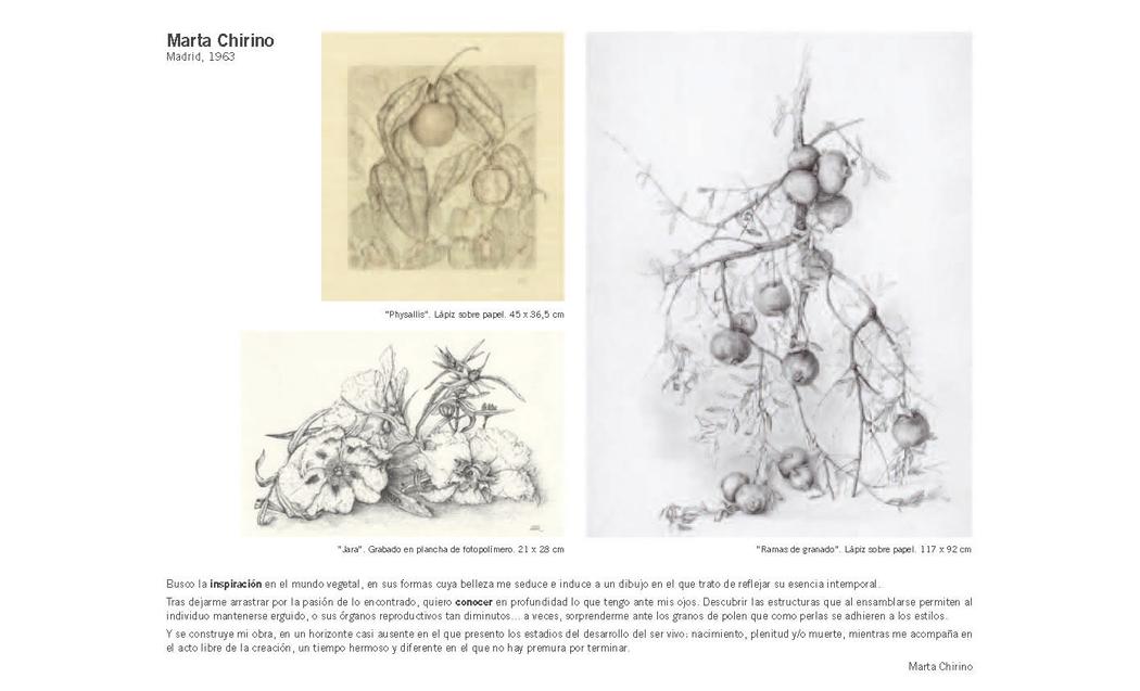 Artista Marta Chirino Argenta