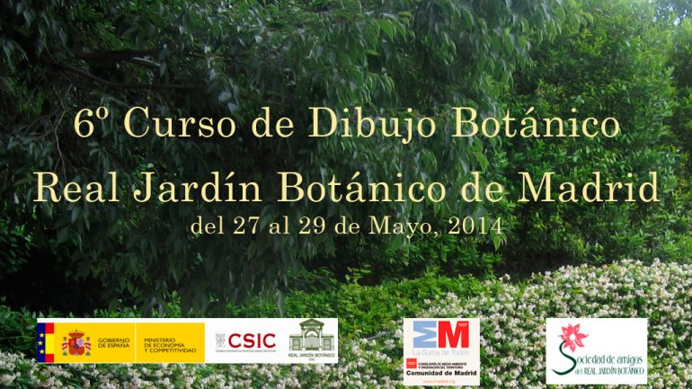 6º Curso de Dibujo Botánico en el Real Jardín Botánico, CSIC, de Madrid