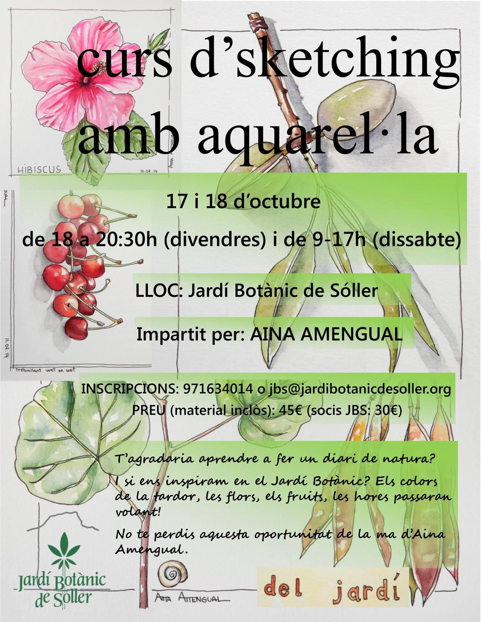 curso de dibujo botanico impartido por Ana Amengual