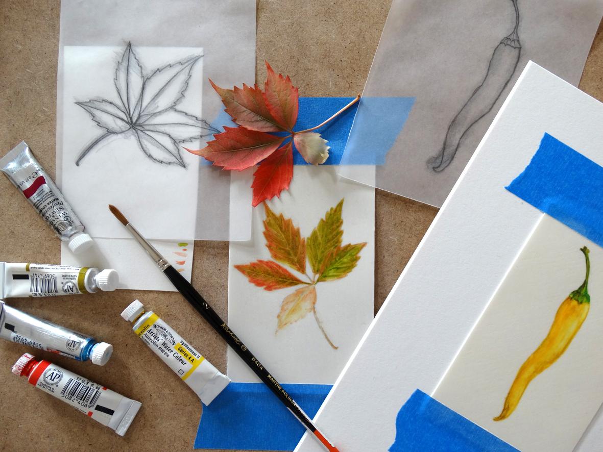 pintura sobre pergamino