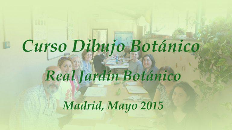 7º Curso de dibujo botánico en el RJBM