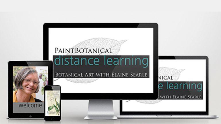 Curso online de ilustración botánica por Elaine Searle