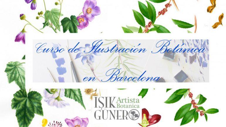 Curso de Ilustración Botánica a la acuarela en Barcelona