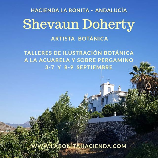 Cursos impartidos por Shevaun Doherty en la Hacienda La Bonita