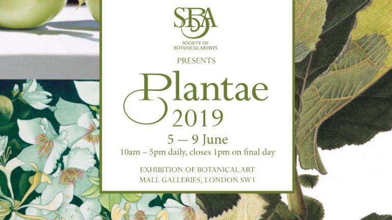 PLANTAE, EXPOSICIÓN DE ARTE BOTÁNICO EN LONDRES